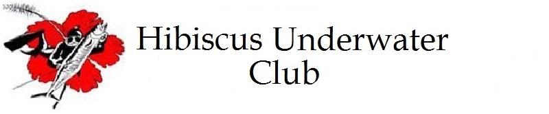 Hibiscus Underwater Club Logo